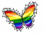 Ripped Torn Metal Butterfly Design With Gay Pride LGBT Rainbow Flag Motif External Vinyl Car Sticker 125x90mm
